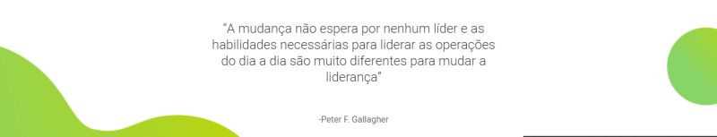 Change Management Quotes, Change Management Quote Peter F Gallagher, Change waits for no leader & the skills required for leading day-to-day operations are very different to change leadership, Peter F Gallagher change management expert speaker global thought leader, change management experts speakers global thought leaders, change management handbook, change management leadership, change management quote of the day,
