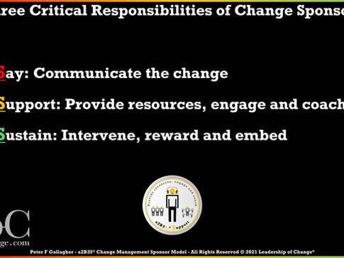 Change Management Sponsorship - Three Main Responsibilities