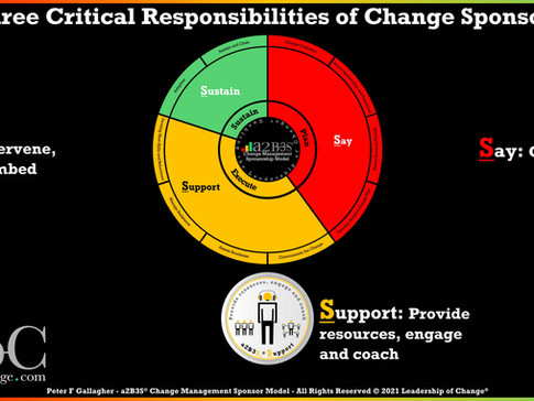 Change Management Sponsorship: Say, Support and Sustain