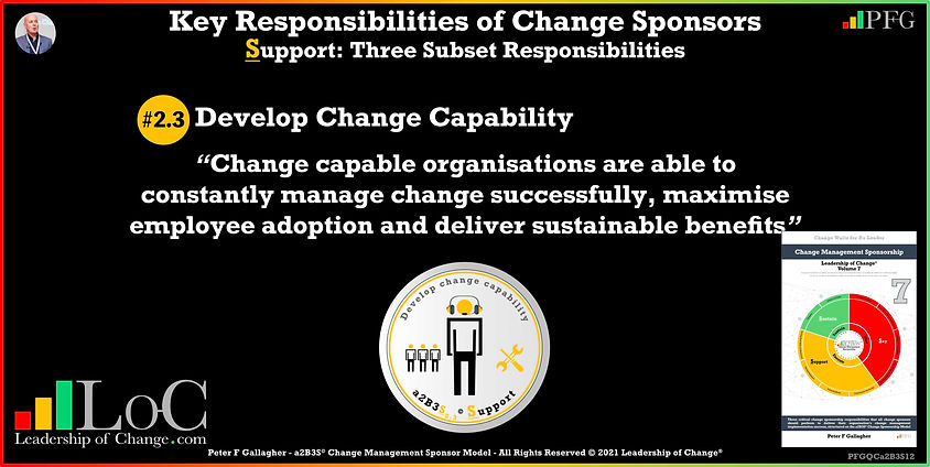 Change Management Sponsorship, sponsor Develop Change Capability, Sponsor Change capable organisations are able to constantly manage change successfully, maximise employee adoption and deliver sustainable benefits, Peter F Gallagher Change Management Experts Speakers Global Thought Leaders, Peter F Gallagher Change Management Expert Speaker Global Thought Leader, change sponsorship, leadership of change,