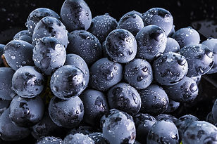 black-grapes-water.jpg