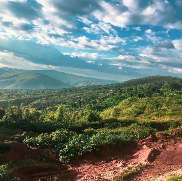 Lush hills outside of Kigali, Rwanda