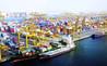 جمارك دبي تنجز 688 ألف مطالبة بقيمة 4.6 مليار درهم في 9 أشهر