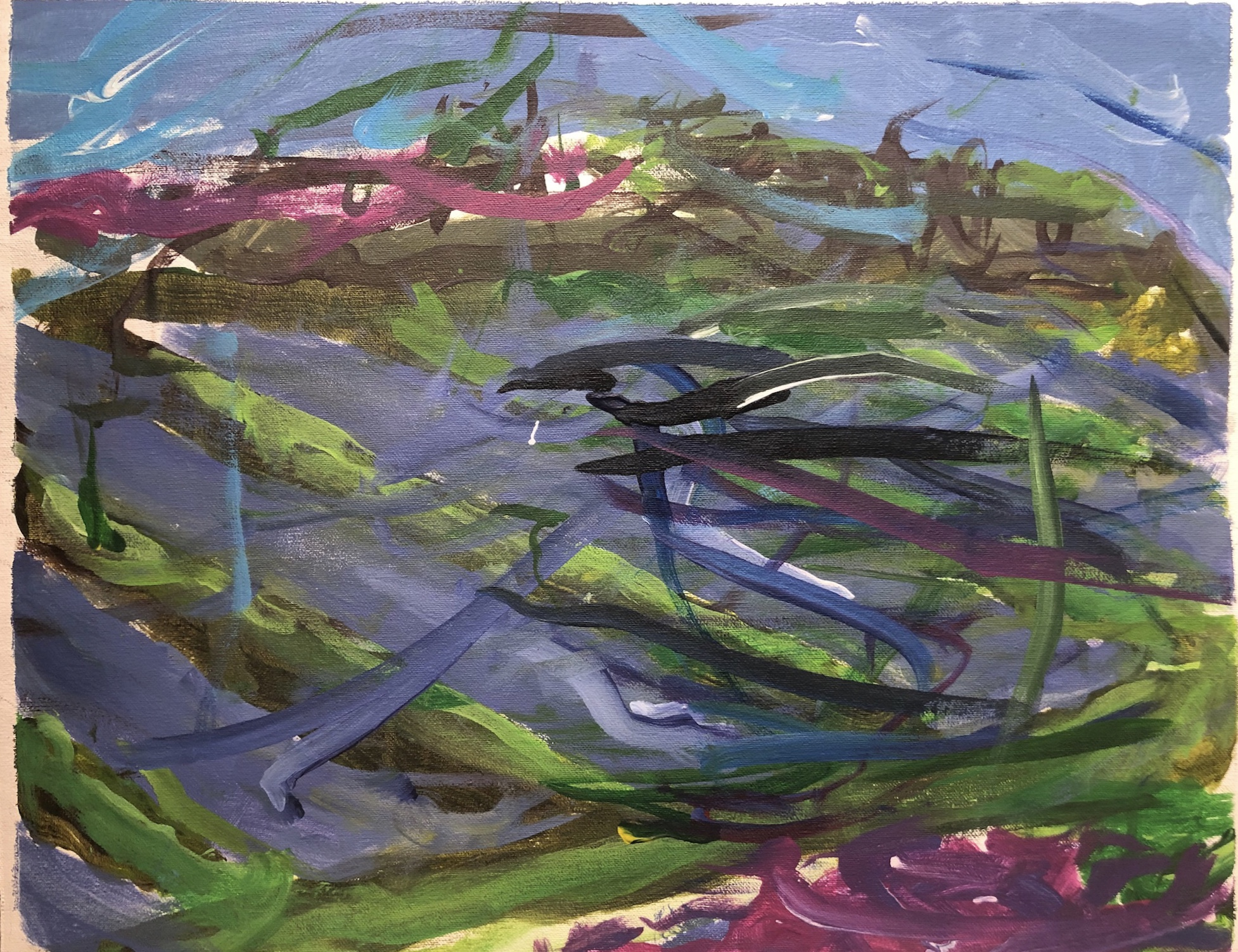 Lavender Fields 2017 450x350 Canvas