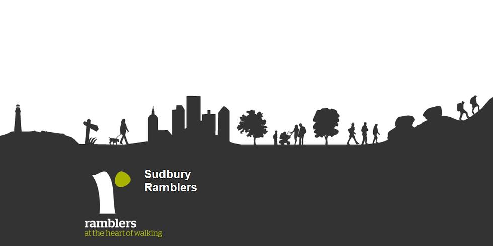 Wool Towns Walk Part 1   Sudbury Ramblers 50th Anniversary Walks