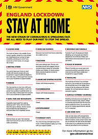Stay at home poster.png