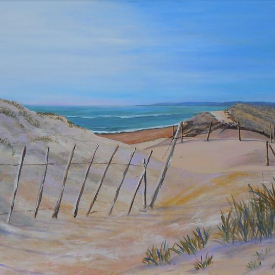 Sur les dunes