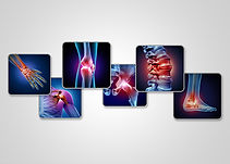 The_Importance_of_Musculoskeletal_Health