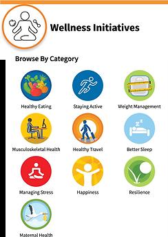 Wellness Initiative Categories.png