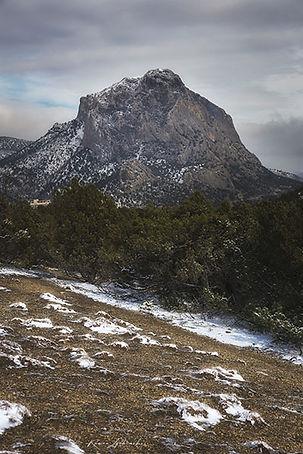 Сокол в снегу сайт.jpg