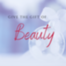 Copy of Give the Gift of (10).png