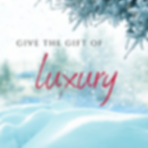 Copy of Give the Gift of (5).png