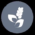 Plant button.png