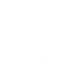 NS-icon-white.png