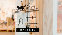 OPEN HOUSE & Preschool Registration  | February 18th 2020