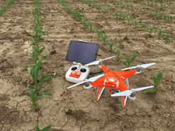 Agricultural Mapping