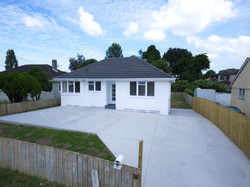 Auckland Realestate