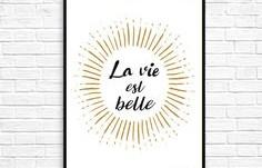 La vie est belle !!!