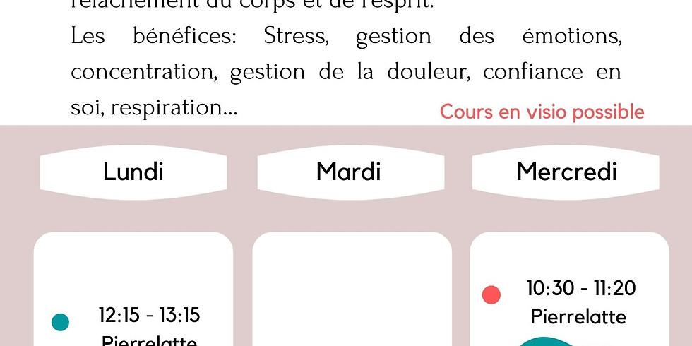 Cours Sophrologie ados adultes Saint Montan