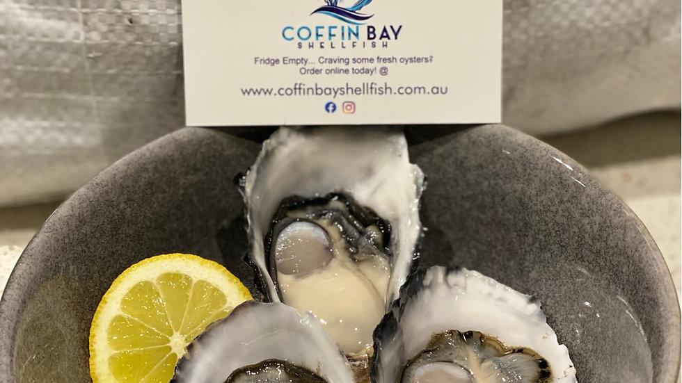 Coffin Bay Oysters Gladstone & Miriam Vale collection 5 Dozen Bag - $75