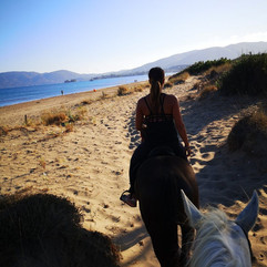 horse riding 1.jpg