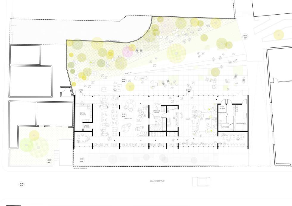 Plan rez-de-chaussée du projet