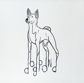 """""""Dog"""""""