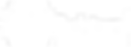 logo_orthin_white.png