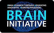taxo_BRAIN-Initiative.png