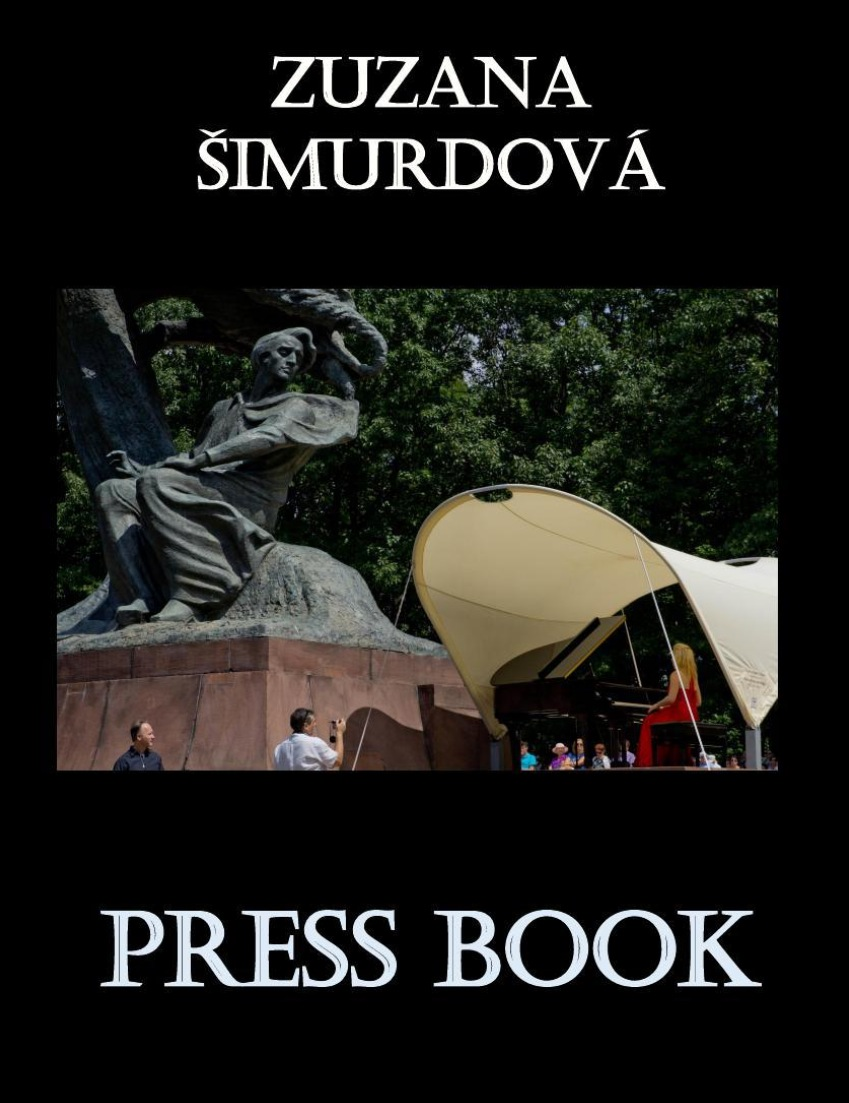 press book cover.PNG