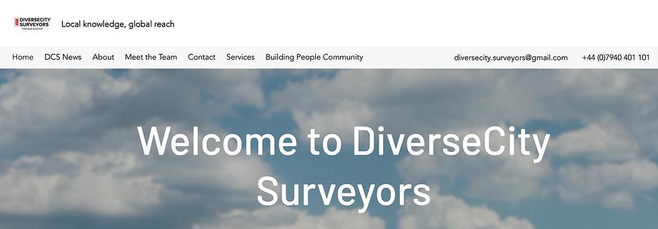 Diverseciity website.png