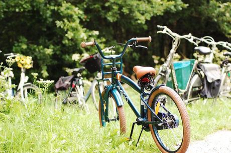 Dutch bike.JPG