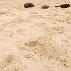 Na areia