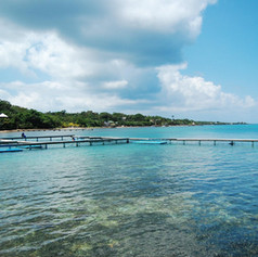 Vista de Sandy Bay