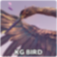 bird_icon.png