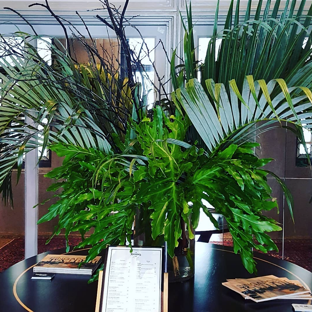 Plant arrangement at The Masons Table