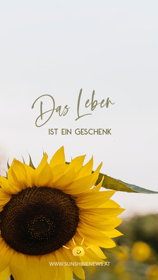 sunshinenews_wallpaper_8 Kopie.jpg