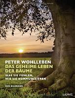 Das_geheime_Leben_der_Bäume.png