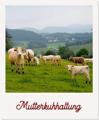 muttertierhaltung_polaroid.jpg