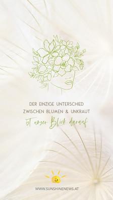 sunshinenews_wallpaper_43.jpg