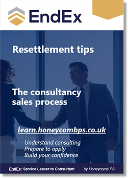 EndEx Guides - The consultancy sales pro