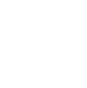 ae_gearlogo_knockout_white.png