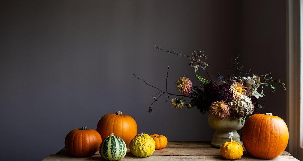 pumpkins3000.jpg