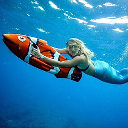 Finding Nemo Seabob