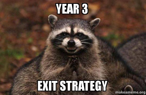 Year 3. Exit strategy.