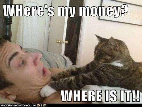 meme. where's my money
