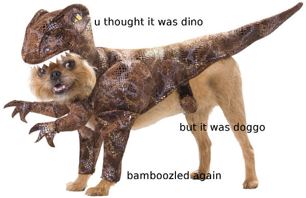 Meme about being bamboozled