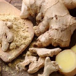 Ginger-Rood-Herb-Spoon.jpg