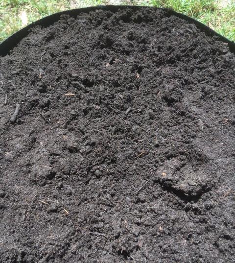 SOIL IN BAG OVER PERLITE