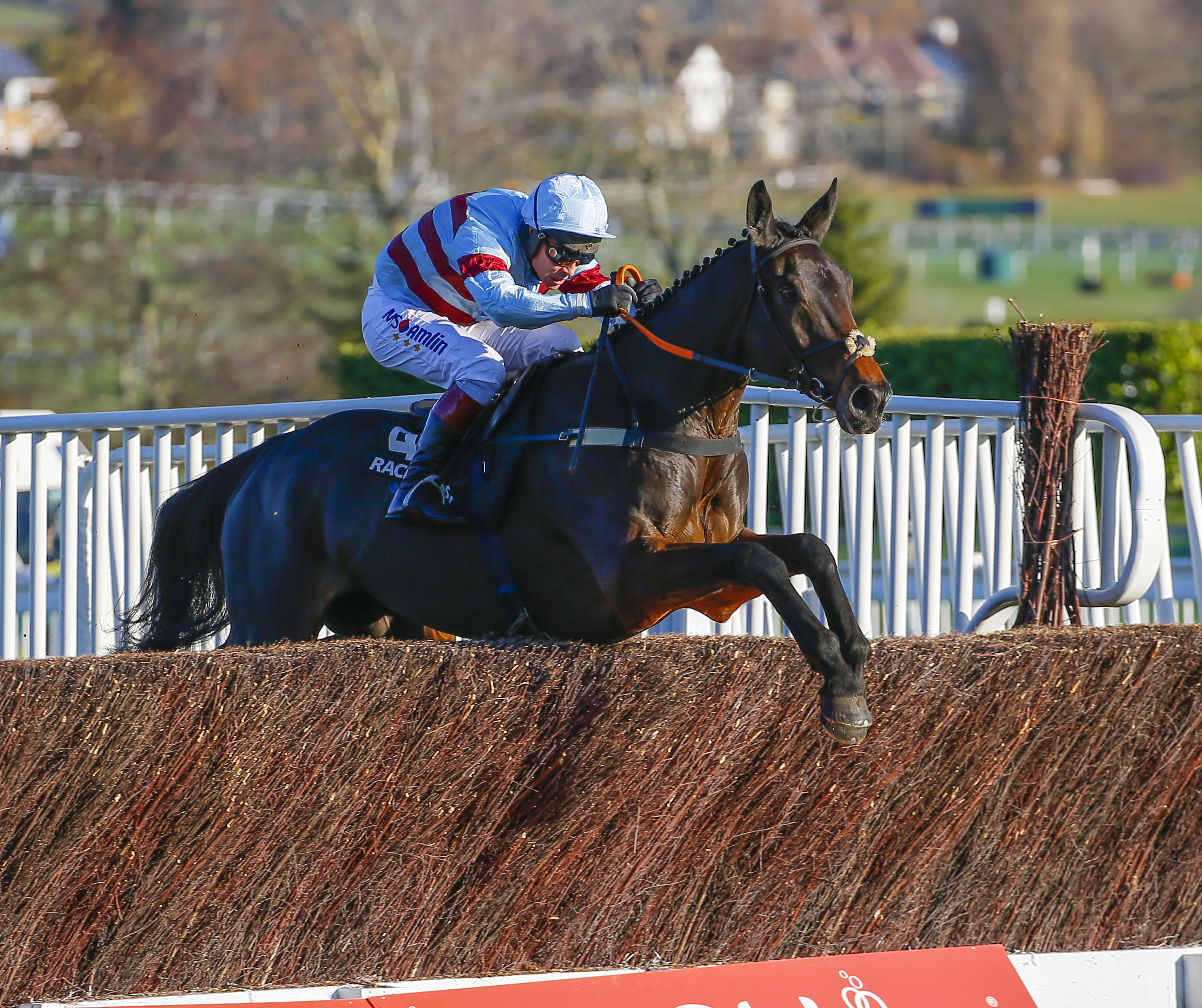 racehorse trainer